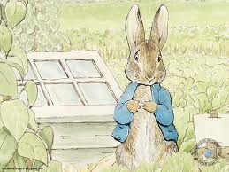 Special Story Time Guest- Peter Rabbit   Nicola's Books